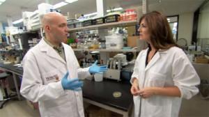 Anti-microbial plastic reduces threat of 'super-bugs' resistant to antibiotics