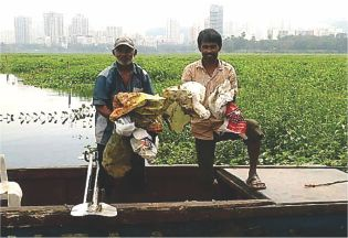 Plastic Bags Polluting Powai Lake Removal Programme
