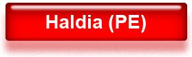 Haldia PE price