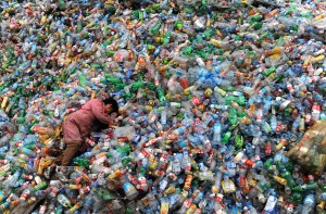 Green Carpet of 140,000 recycled PET bottles to roll out at Tokyo International Film Festival