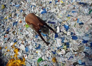 New Delhi, India, to attempt another ban on plastic bags