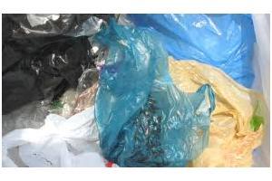 India's plastic industry needs to invest in Hamriya Free Zone