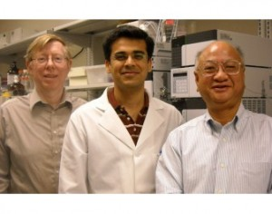 Rice University scientists turn soy mash into high value succinic acid