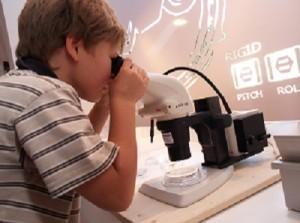 Borealis cooperates with Vienna's ZOOM Children's Museum