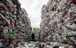 Plastic-breaking bacteria need field test