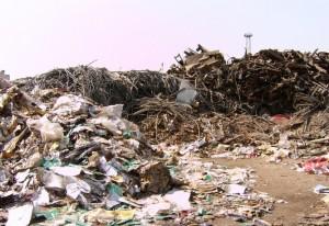 government urged to curb dumping of hazardous plastic scrap