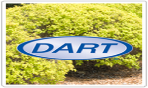 Dart All St to Increase its Operation with New Kentucky Warehouse