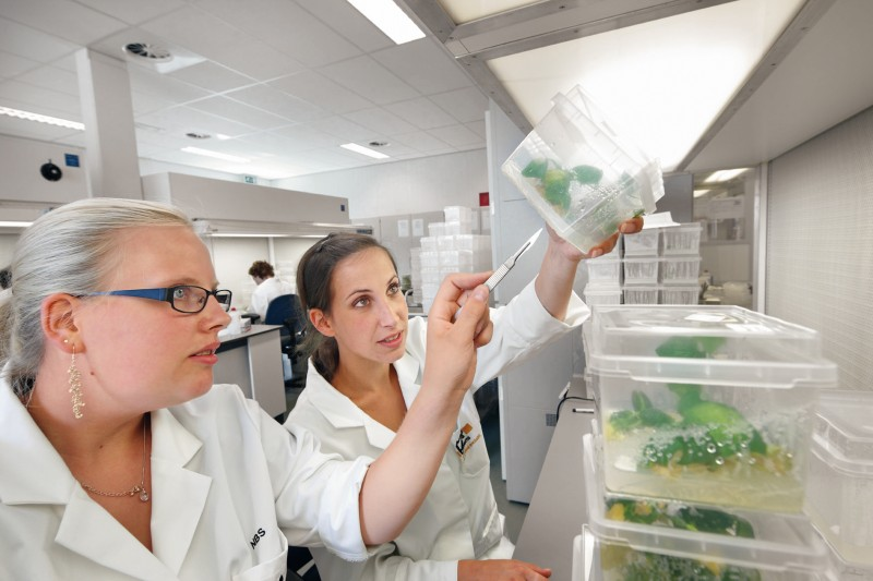Bayer CropScience opens new development facilities and laboratories at North American headquarters