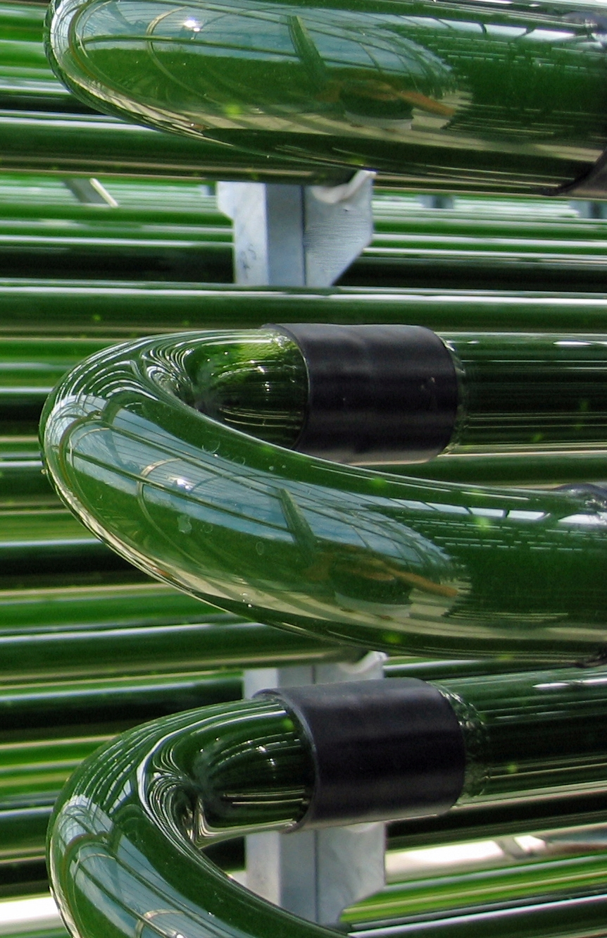 Clear Rigid PVC Resists UV in Outdoor Tubing Uses Such as Algae Farming and Biofuel Production