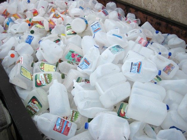 Closed Loop Recycling set to become world's largest recycler of milk bottles