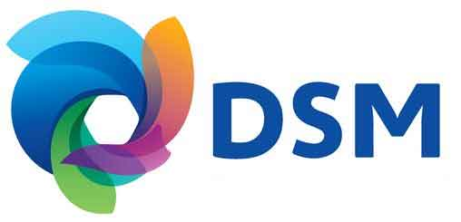 DSM announces Akulon and Novamid polyamide 6 polymer price increases for Europe and the Americas