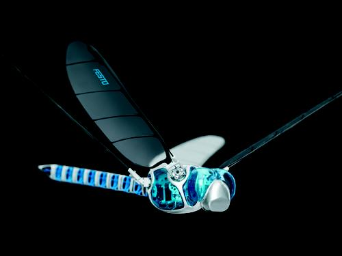 Festo's Dragonfly Robot Flies, Hovers & Glides
