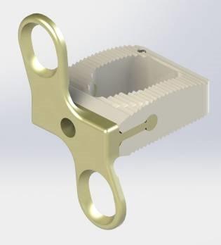 Italy's Sintea Plustek Launches New Spinal Implants Made of Solvay's Zeniva® PEEK