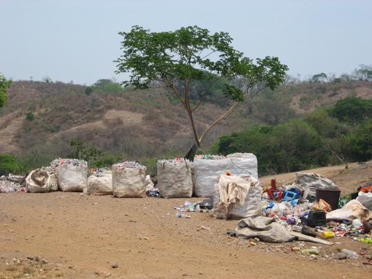 Plastics threaten ecosystem in Alagarkoil hills