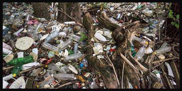 plastic news